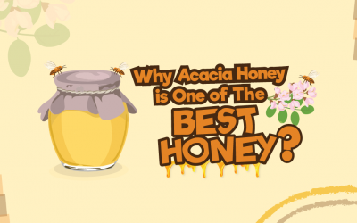 Why Acacia Honey is One of The Best Honey?