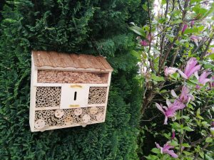 Bee house on tree