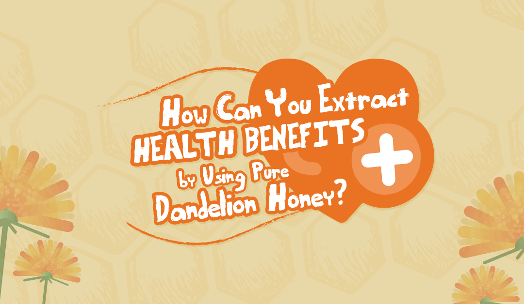 How Can You Extract Health Benefits by Using Pure Dandelion Honey?