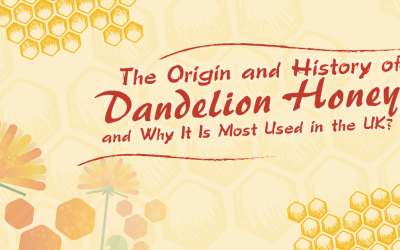 The Origin and History of Dandelion Honey and Why It Is Most Used in the UK